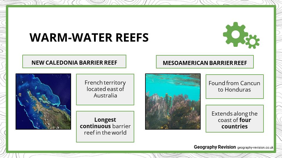 Coral Reefs - Presentation 2