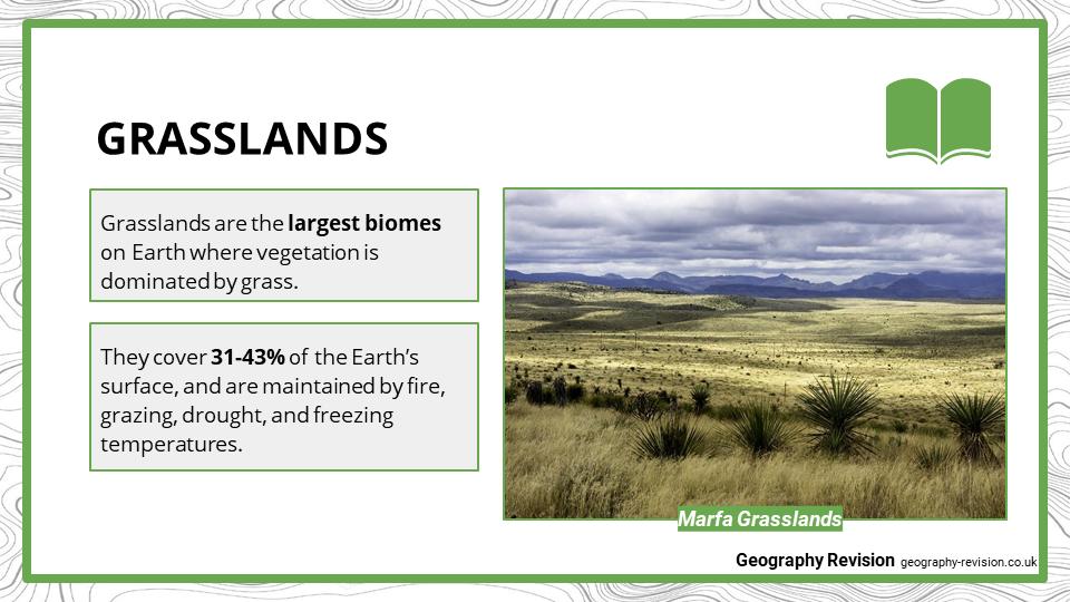 Grasslands - Presentation 1